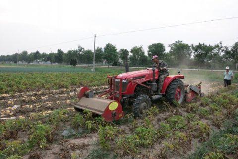 公司最新研究的前置杀秧机上市。