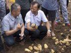2018中国马铃薯生产全程机械化现场演示观摩会活动在青岛洪珠隆重召开